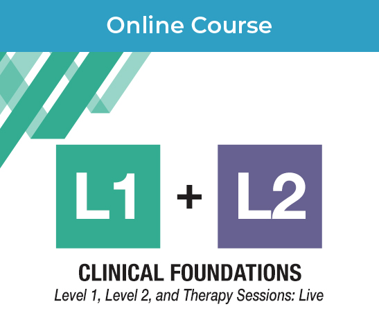 Clinical Foundations_Online Product Image